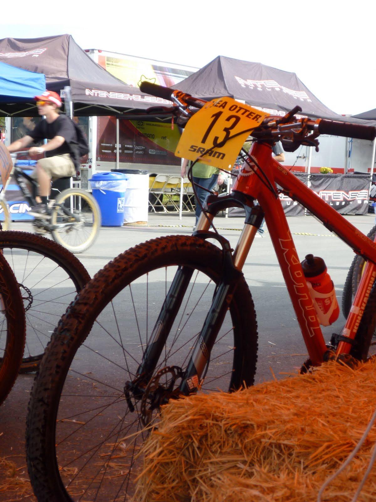 sea_otter_bike