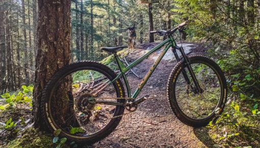 Kona Dream Builds: Matt's Honzo ST Can See the Forest and the Trees