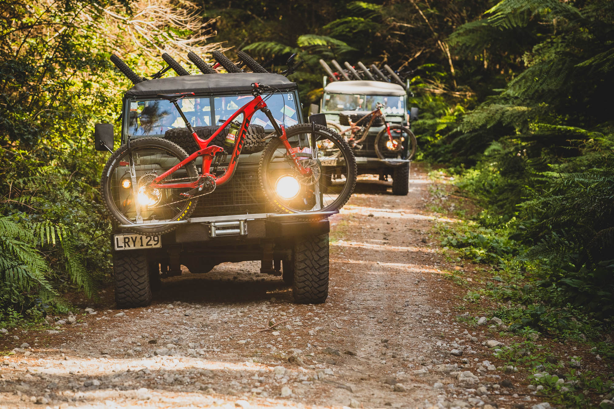Into the Woods: Kona's Gravity Team Ride Rotorua with the Locals