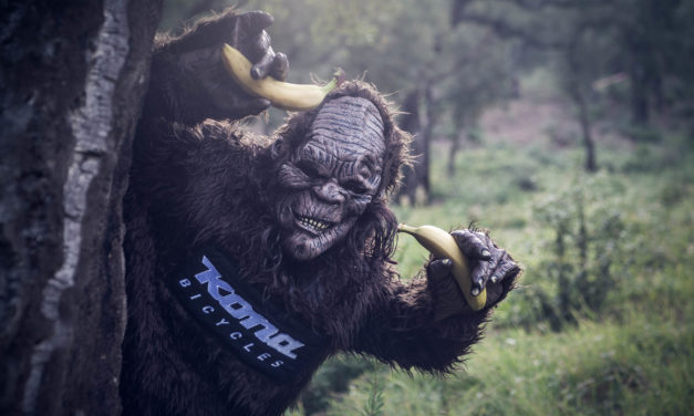 konasquatch went bananas at Roc d'Azur !