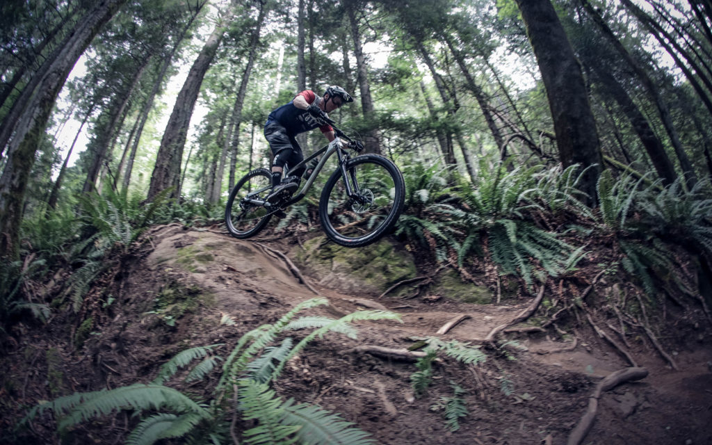 Process 134 Named a Hottest 2020 Trail Bike
