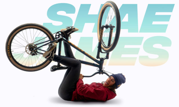 Kona Dream Builds: To The Moon, Shae's Shonky