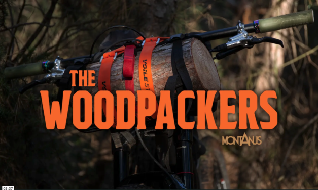 The Woodpackers