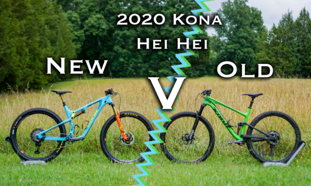 New V. Old: A Competition Of Hei Hei's