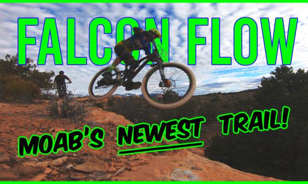 Falcon Flow