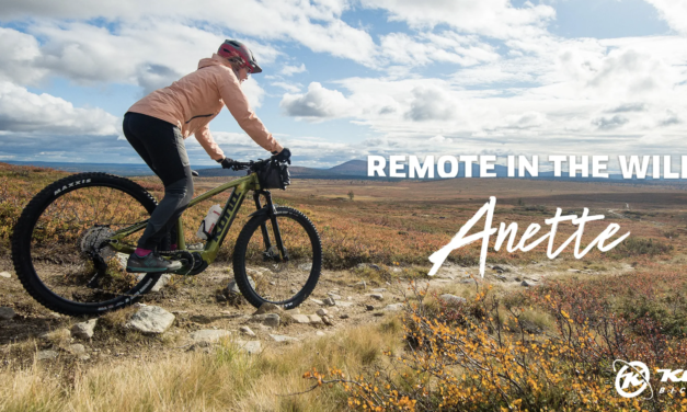Remote in the Wild: Anette