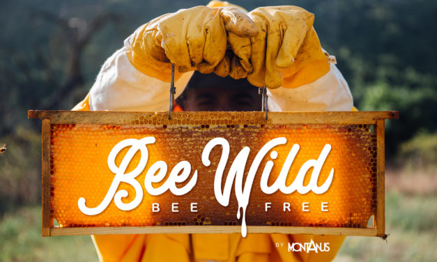 Bee Wild, Bee Free
