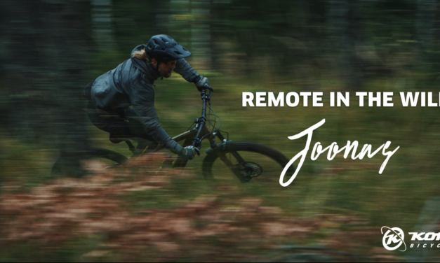 Remote In The Wild: Joonas