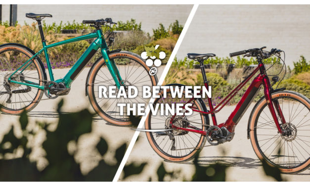 Read Between The Vines On The ECoco-DL and DewE-DL